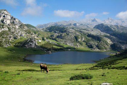 Turismo Asturias en las montañas