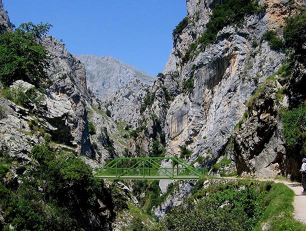 Puente Bolin